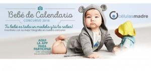 Tu bebé puede ser modelo del calendario 2016 de Células Madre de Venezuela