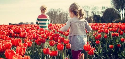 La teoría de Montessori toma fuerza y da impulso a los padres que desean romper esquemas