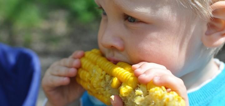 Hay ciertos mitos sobre la alimentación que siguen muchos padres