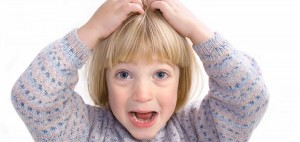 Liendres y piojos son comunes en los niños