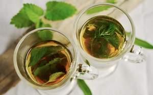 Las plantas medicinales son ideales para la casa