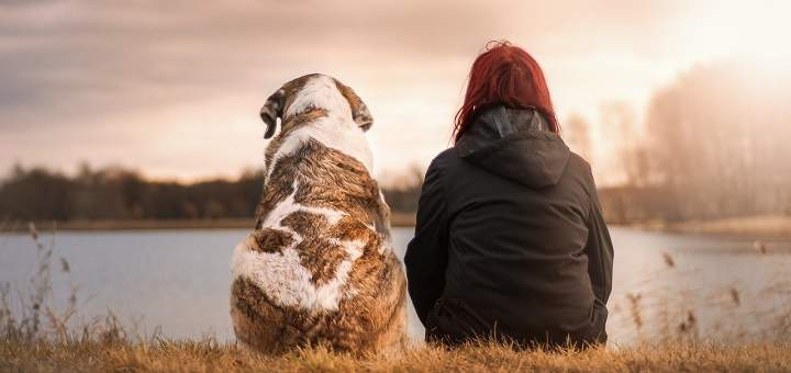 La muerte de una mascota se debe afrontar como un luto